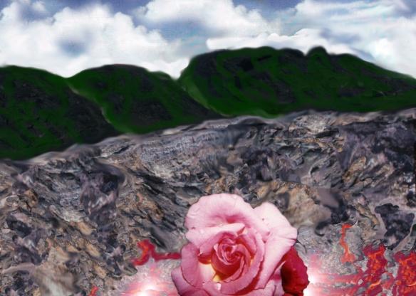 Rosa della roccia